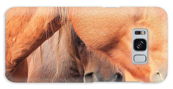 Horse Hide 2 Galaxy Case by Jim Sauchyn