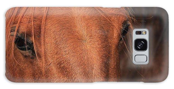 Horse Hide Galaxy Case