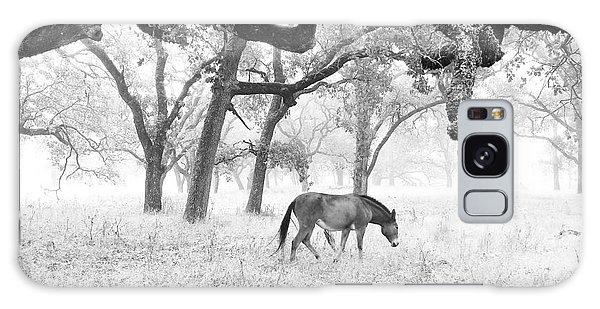 Horse In Foggy Field Of Oaks Galaxy Case by CML Brown