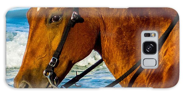 Horse Portrait  Galaxy Case by Shannon Harrington