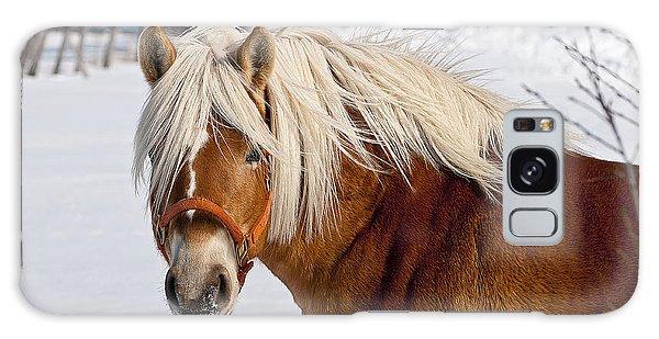 Horse Prince Galaxy Case