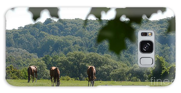 Horses And Summer Breeze Galaxy Case