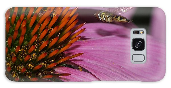 Hoverfly Hovering Over Cornflower Galaxy Case