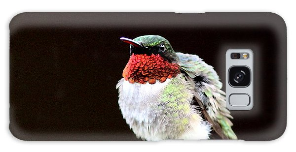 Hummingbird - Ruffled Feathers Galaxy Case