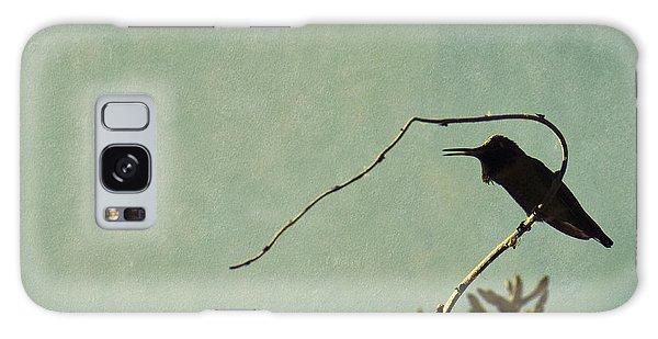 Hummingbird On Winter Wisteria Galaxy Case