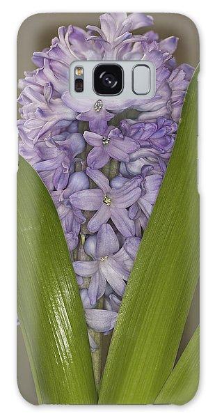 Hyacinth In Full Bloom Galaxy Case