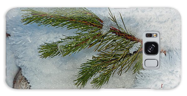 Ice Crystals And Pine Needles Galaxy Case by Tikvah's Hope