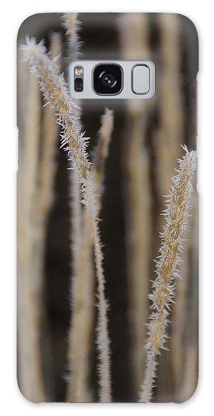 Ice Crystals On Tall Grass Galaxy Case by Mick Anderson