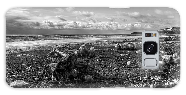 Icy Alaskan Beach Galaxy Case by Michele Cornelius