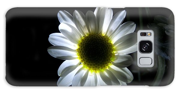 Illuminated Daisy Photograph Galaxy Case