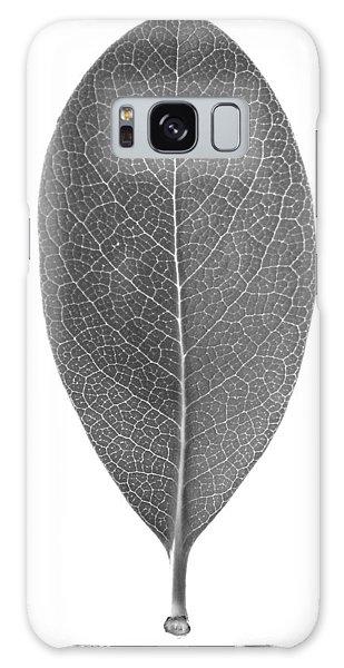 Indian Hawthorn Leaf Galaxy Case