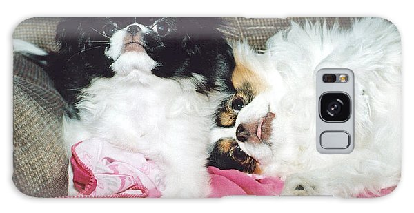 Japanese Chin Dogs Begging For Treats Galaxy Case by Jim Fitzpatrick