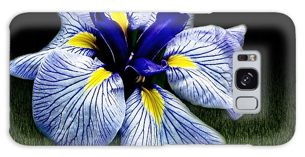 Japanese Iris Ensata - Botanical Wall Art Galaxy Case