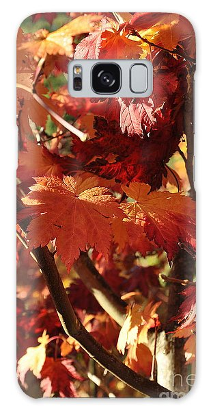 Japanese Maple 1 Galaxy Case by Tanya  Searcy