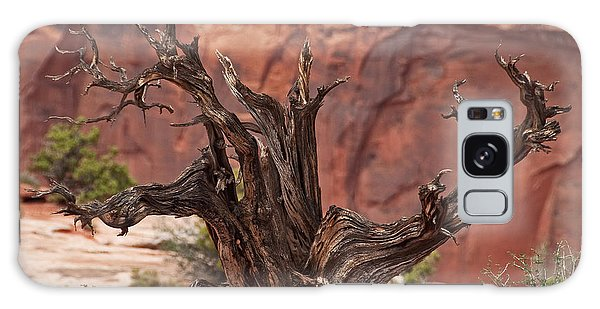 Juniper At Canyonlands Galaxy Case by Bob and Nancy Kendrick