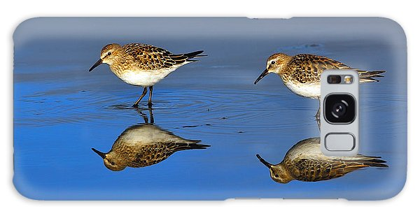 Juvenile White-rumped Sandpipers Galaxy Case