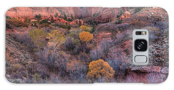 Kolob Canyon Galaxy Case
