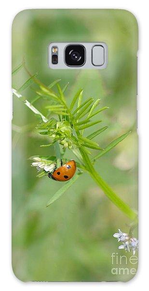 Ladybug Galaxy Case by Tannis  Baldwin