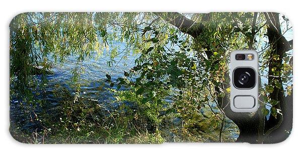 Lakeside Tree Galaxy Case