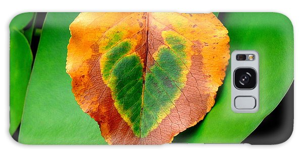 Leaf Leaf Heart Love Galaxy Case