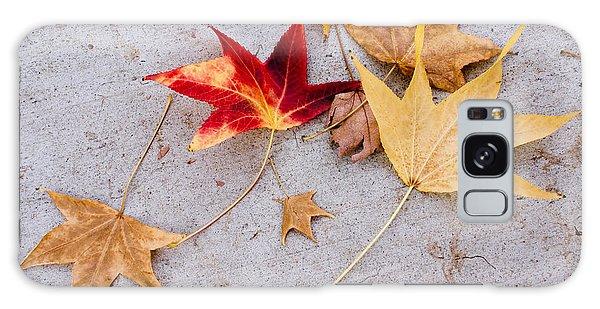 Leaves On The Sidewalk Galaxy Case