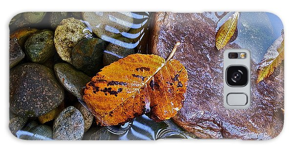 Leaves Rocks Shadows Galaxy Case by Bill Owen