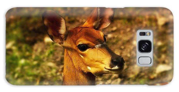 Lesser Kudu Galaxy Case