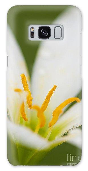 Lily Galaxy Case