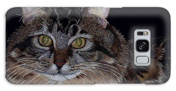 Little Girl - Maine Coon Cat Painting Galaxy Case by Patricia Barmatz
