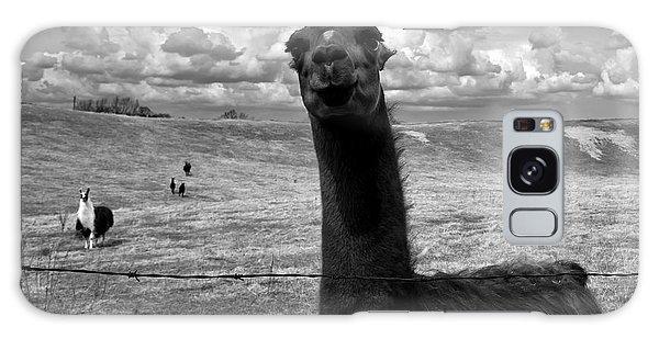 Llama Galaxy S8 Case - Llama by Cale Best