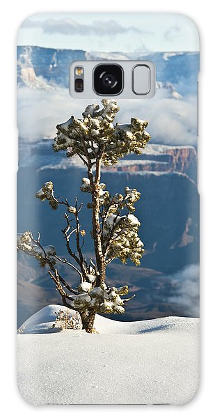 Lonely Tree Over The Grand Canyon Galaxy Case