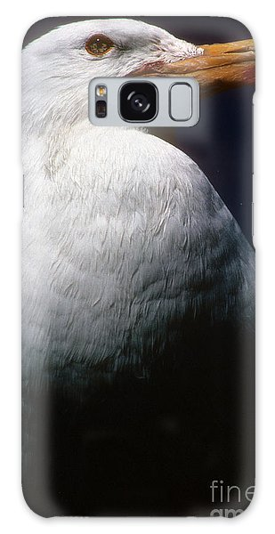 Long Island Seagull Galaxy Case