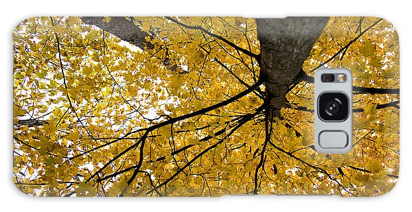 Look Up It Is Fall Galaxy Case by John Crothers