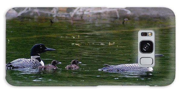 Loons With Twins Galaxy Case by Steven Clipperton