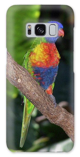 Lorikeet Galaxy Case