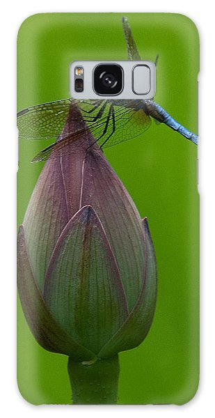 Lotus Bud And Blue Dasher Dragonfly Dl007 Galaxy Case
