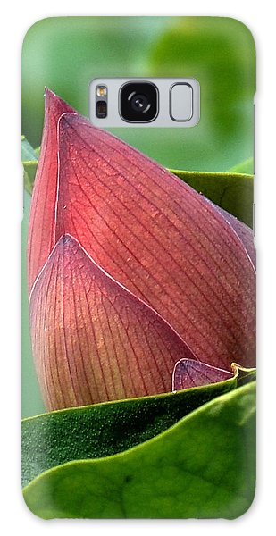 Lotus Bud--bud In A Blanket Dl049 Galaxy Case