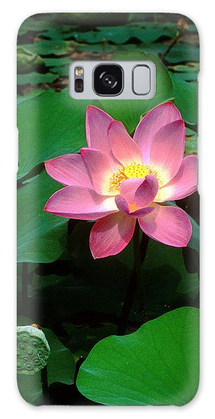 Lotus Flower And Capsule 24a Galaxy Case
