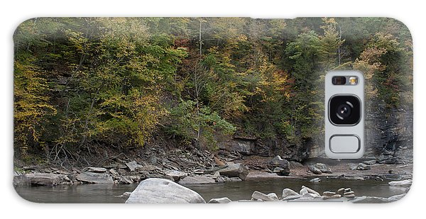 Loyalsock Creek Worlds End State Park Galaxy Case