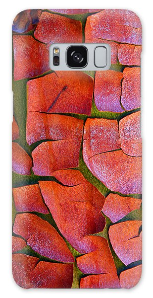 Madrone Galaxy Case