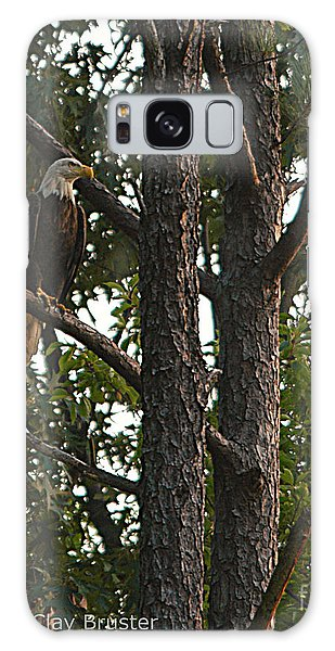 Majestic Bald Eagle Galaxy Case by Clayton Bruster