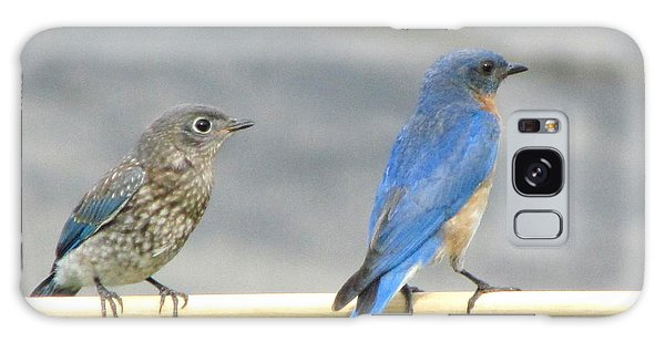 Male And Female Bluebirds On A Perch Galaxy Case by Betty Pieper