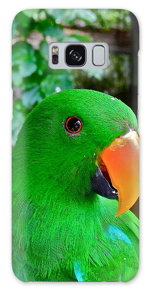 Male Eclectus Parrot II Galaxy Case by Kirsten Giving
