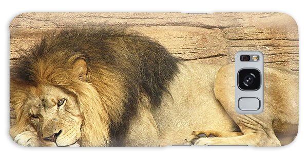 Male Lion Resting Galaxy Case