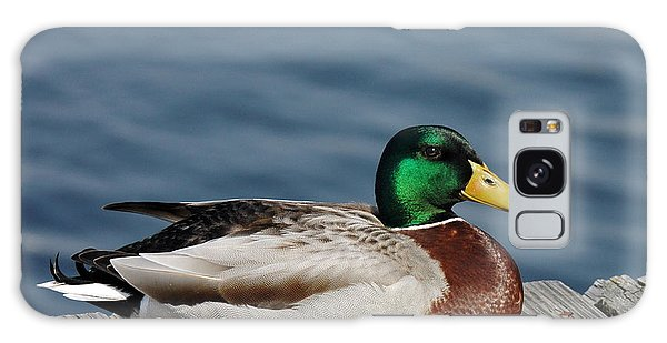 Mallard Profile Galaxy Case