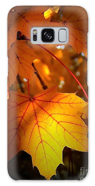 Maple At First Light Galaxy Case