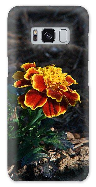 Crossville Galaxy S8 Case - Marigold At Sunset by Douglas Barnett