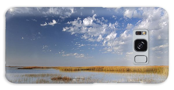 Padre Island National Seashore Galaxy S8 Case - Marsh Padre Island National Seashore by Tim Fitzharris