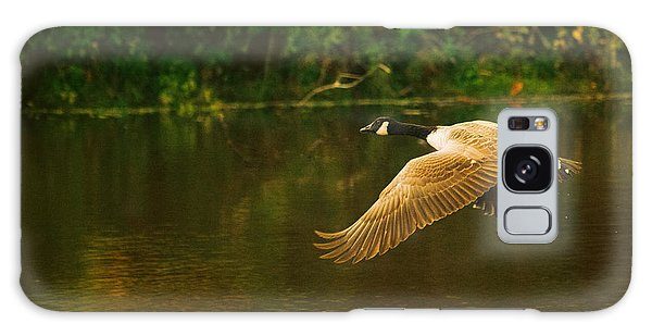 Goose Galaxy Case - Midmorning Launch by Susan Capuano