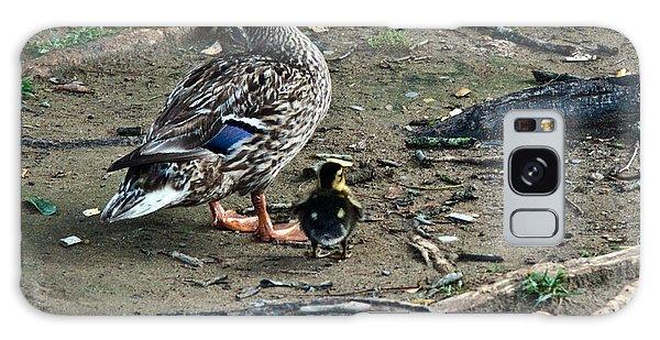 Gosling Galaxy Case - Mom And Duckling by Douglas Barnett